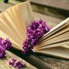 Número de leitoras mulheres é maior na Biblioteca Municipal de Ubatuba