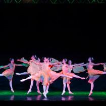 Oficina de Dança FundArt emociona público ao se apresentar em festival internacional