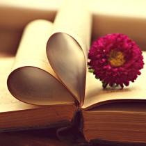 O amor está nos livros